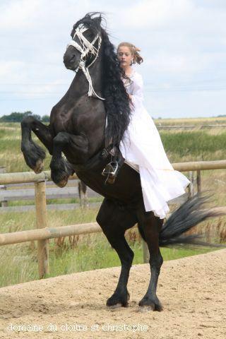 St. Christophe dochter op steigerend paard