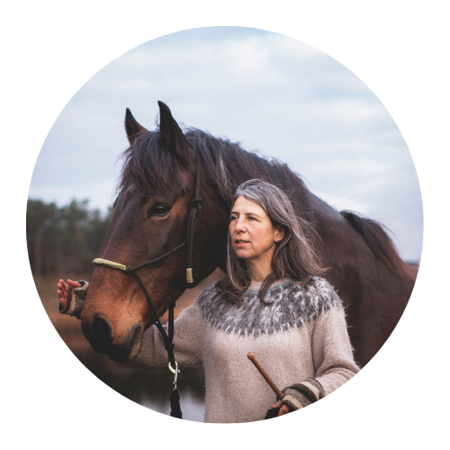 reserveren paardenwagen bij Barbara Eckstein