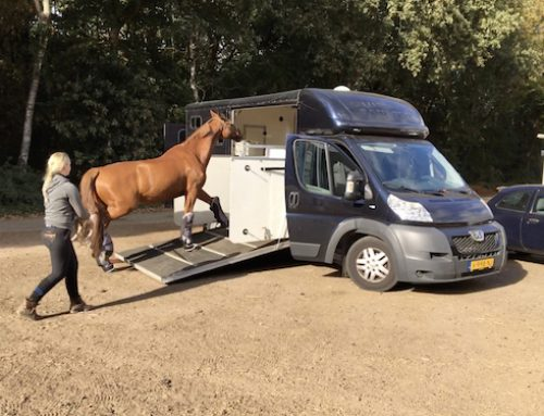Paardenwagen naar het 4th meeting of the International Network Equine Science